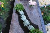 Einzelgrab mit Abdeckplatten
